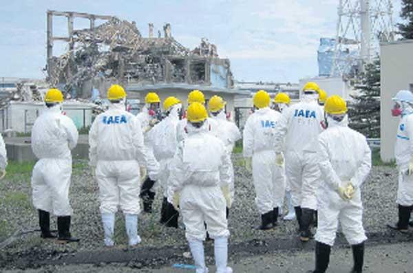 http://www.hilliontchernobyl.com/Images/Fukushima_expert_AIEA.jpg